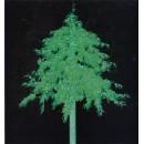 Leuchtende Bäume und Dekor 800000006985