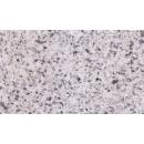 Granit 800000005981