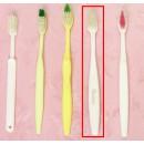 Zahnbürsten und Zahnpasta 16026000015