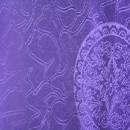 Textil Amt für Restaurants 170020000069